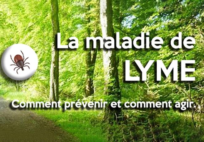 Article-Maladie-Lyme_660x460